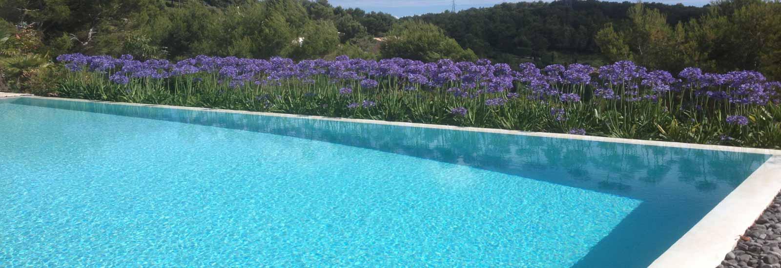 Une piscine a débordement et son jardin