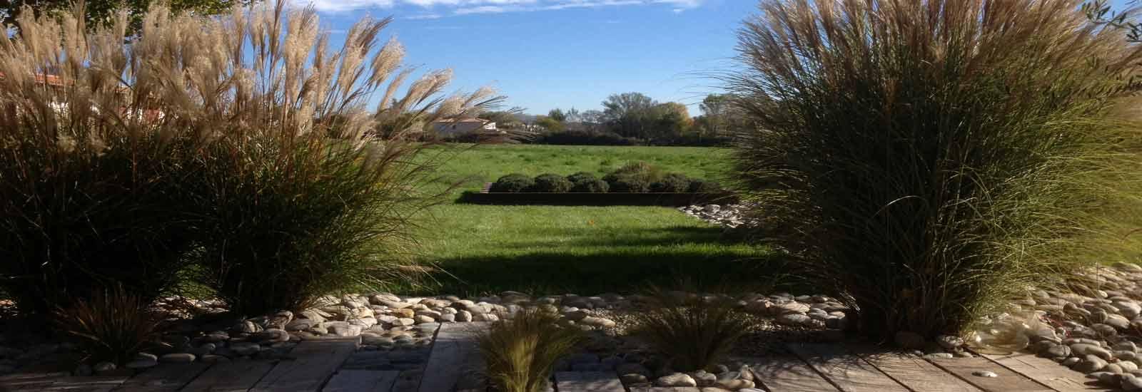 Entretien de jardin agréablement planté par le Jardin des Oliviers